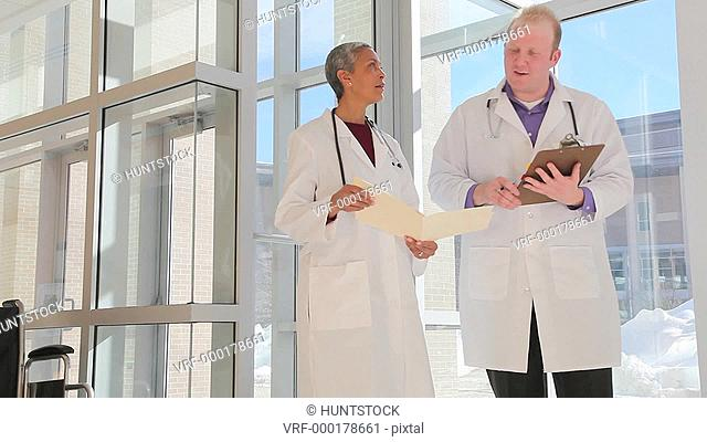 Two doctors consulting in the hospital