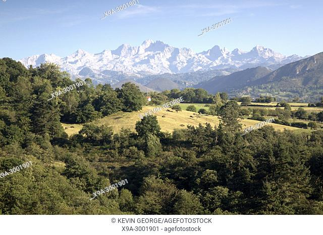 Picos de Europa Mountain Range outside Labra; Austurias; Spain