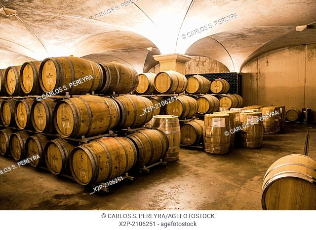 Winemaking in the largest wine region of Catalonia, the Penedes. Barcelona, Spain