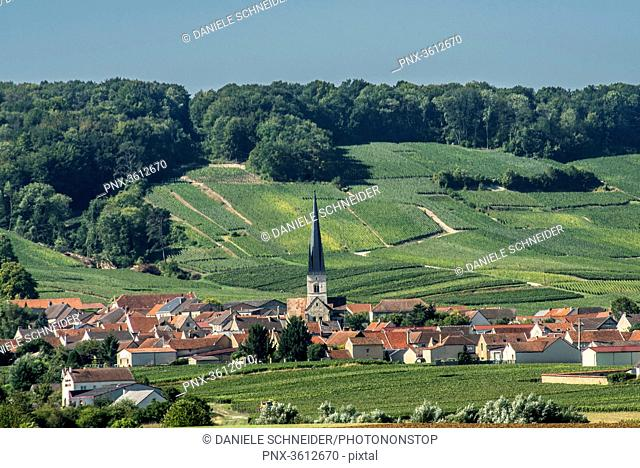 France, Grand Est, Marne, Chamery at the feet of the vineyards, Coteaux de Champagne