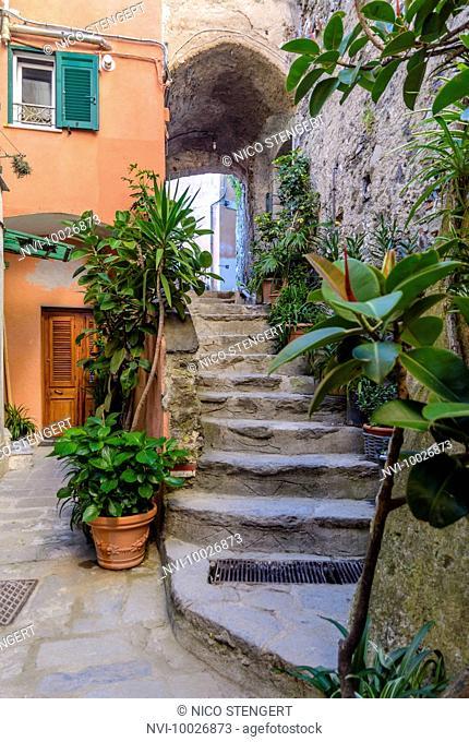 Narrow alley in Vernazza, Italian Riviera, Cinque Terre, Liguria, Italy