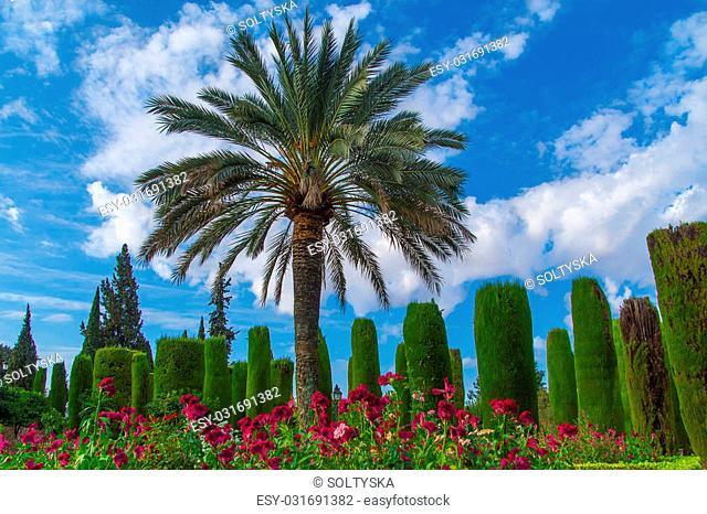 Gardens at the Alcazar de los Reyes Cristianos in Cordoba, Andalusia, Spain