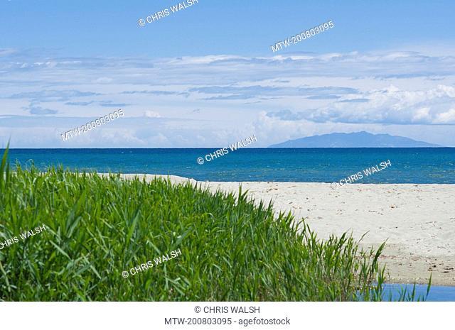Beach ocean turquoise bamboo grass island summer