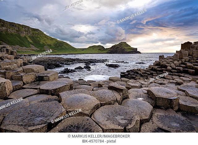 Basalt columns by the coast at sunset, Giant's Causeway, County Antrim, Northern Ireland, United Kingdom