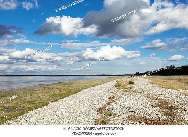 Cap Hornu, Somme bay (baie de Somme) Picardy, France