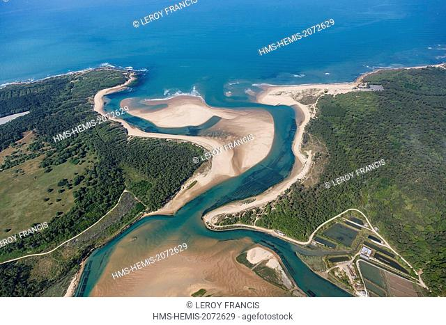 France, Vendee, Talmont Saint Hilaire, the Pointe du Payre and Veillon beach (aerial view)