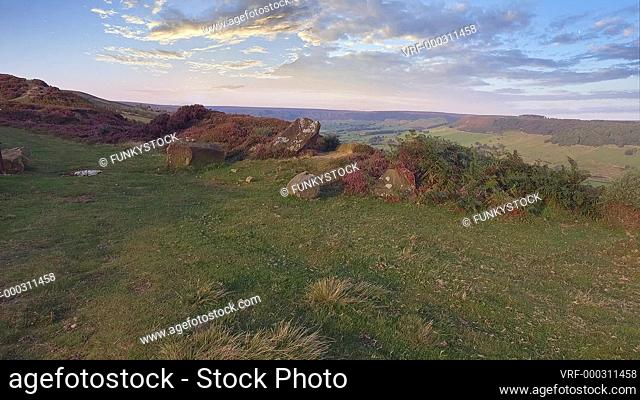 Aerial shot of purple flowering heather and moors, Fryup Dale, North Yorks Moors National Park, North Yorkshire, England