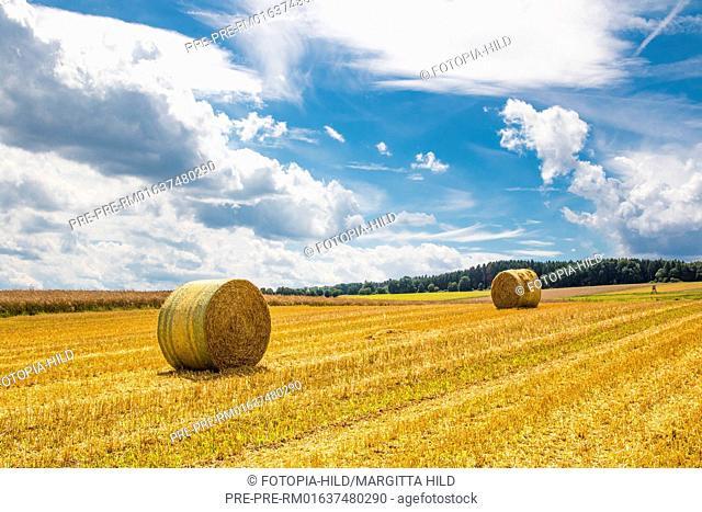 Round straw bales on a stubble field between Dankelshausen and Bühren, Samtgemeinde Dransfeld, Göttingen District, Lower Saxony, Germany