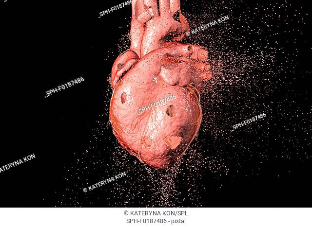 Heart destruction. Conceptual computer illustration that can be used to illustrate heart diseases
