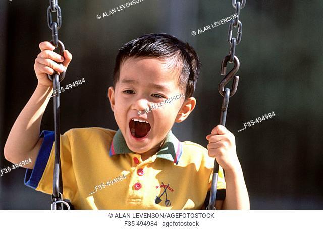 Happy Asian boy Having Fun  on a Swing