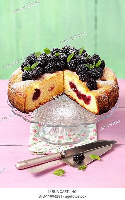 Yoghurt cake with blackberries