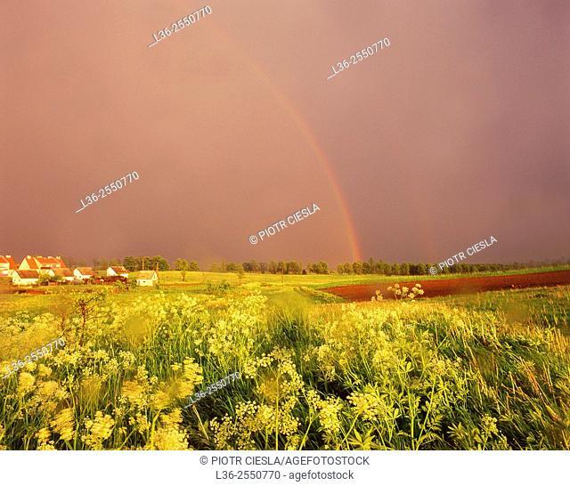 Masurian Lakes region. Rainbow after a rain. Poland
