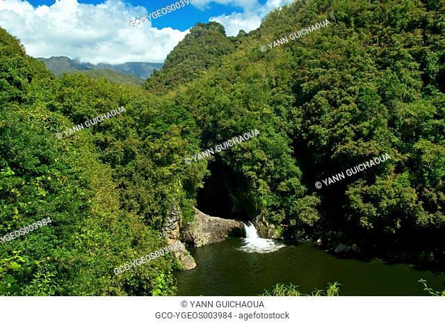BASSIN DE LA MER - REUNION ISLAND