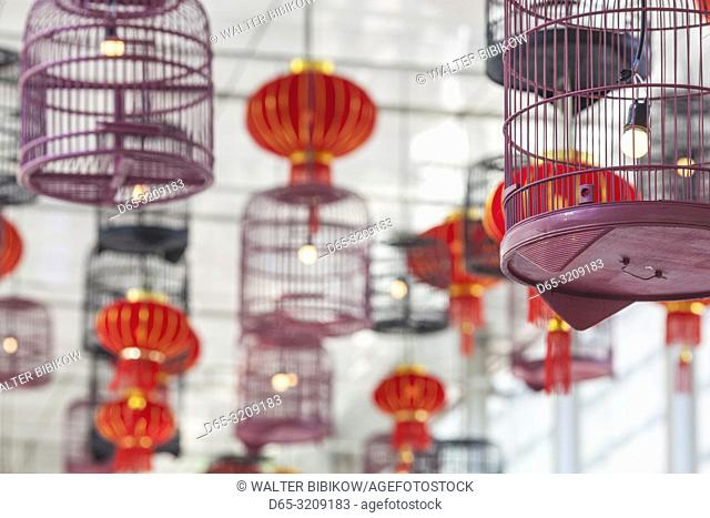 Thailand, Bangkok, Siam Square Area, display of red lanterns and birdcages