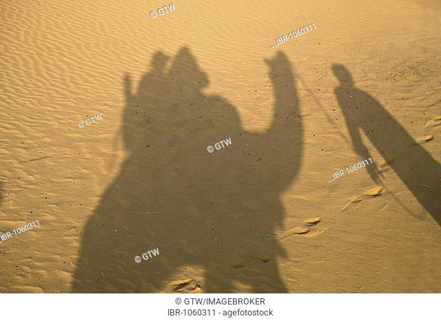 Shadow of camel riders in the sand, Jaisalmer, Thar Desert, Rajasthan, India, South Asia
