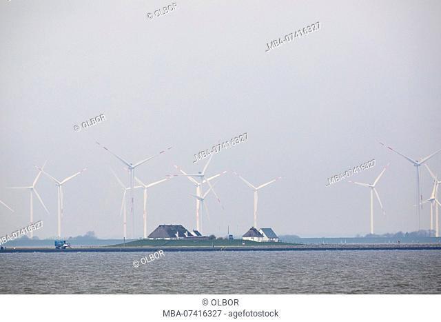 Germany, Schleswig-Holstein, Hamburger Hallig