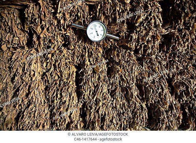 Tobacco factory, Viñales Valley  Pinar del Río province, Cuba
