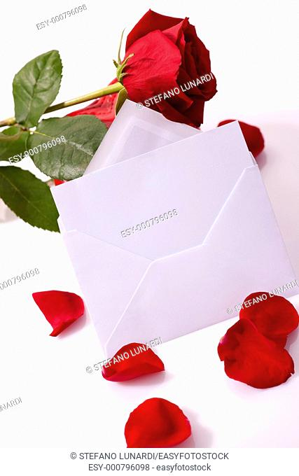 Red rose with balnk card for you own text