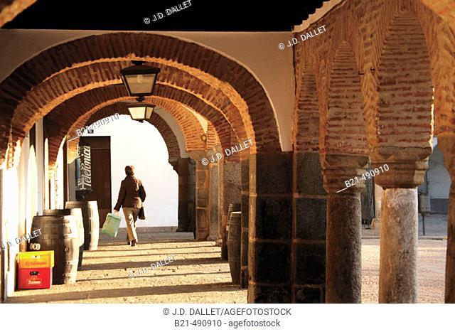 Plaza Grande at Zafra. Badajoz province. Spain