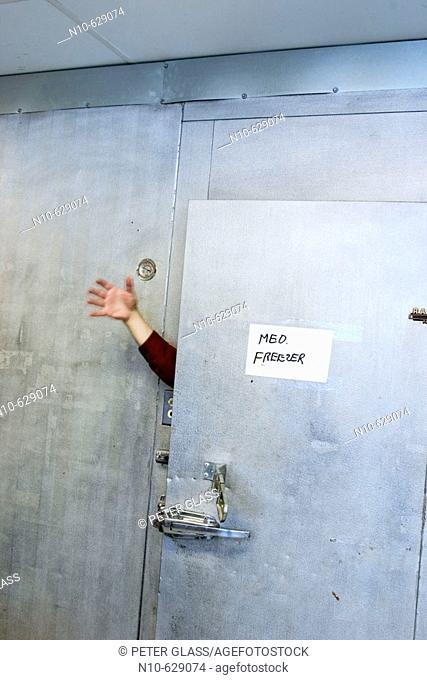 Man's hand sticking out through the open door of an industrial freezer