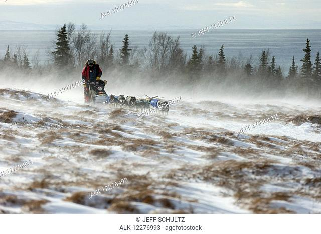 Nathan Schroeder of Minnesota runs on the trail in 30 mph winds and through tussocks several miles after leaving the Unalakleet checkpoint during Iditarod 2015