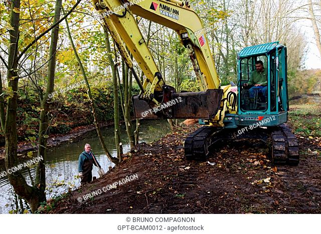 MAINTENANCE WORK ON THE BANKS OF THE RISLE RIVER, RUGLES, EURE 27, UPPER NORMANDY, FRANCE, EUROPE