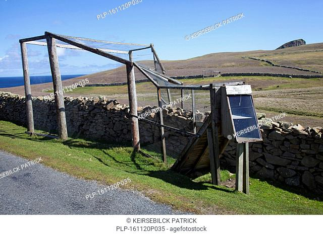 Heligoland trap / funnel trap for trapping birds, so that they can be banded by ornithologists on Fair Isle, Shetland, Scotland