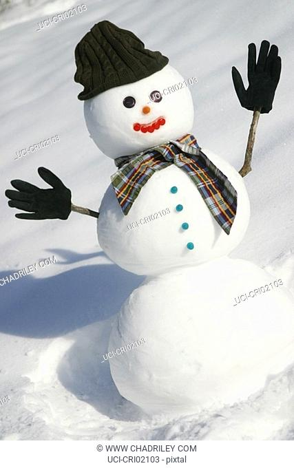 Snowman with hat, scarf and gloves