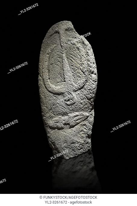 Late European Neolithic prehistoric Menhir standing stone with carvings on its face side. The representation of a stylalised male figure starts at the top with...