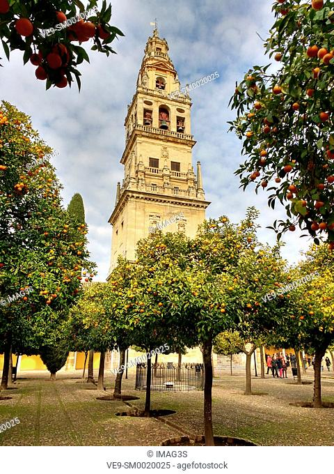 Tower and «patio de los naranjos», Mezquita Cathedral Arab Wall. Cordoba City Andalusia, Spain, Europe