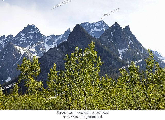 Alpine Lakes Wilderness, Washington: Stuart Range peaks from Stuart Lake Trail. On the left is Sherpa Peak