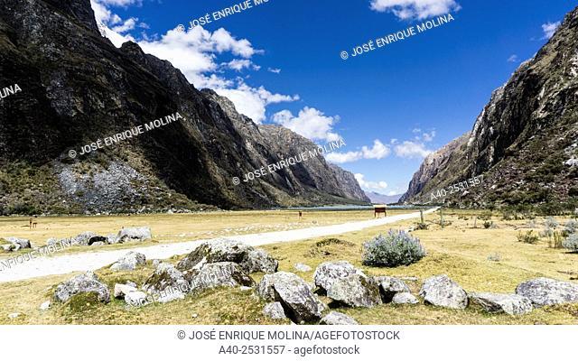 Huascarán National Park, LLanganuco lake. Yungai, Ancash, Andes mountains, Peru