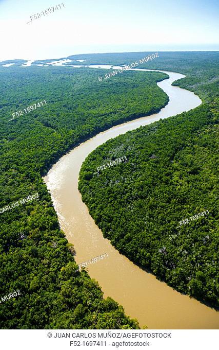 Aerial view, Everglades National Park, Florida, USA