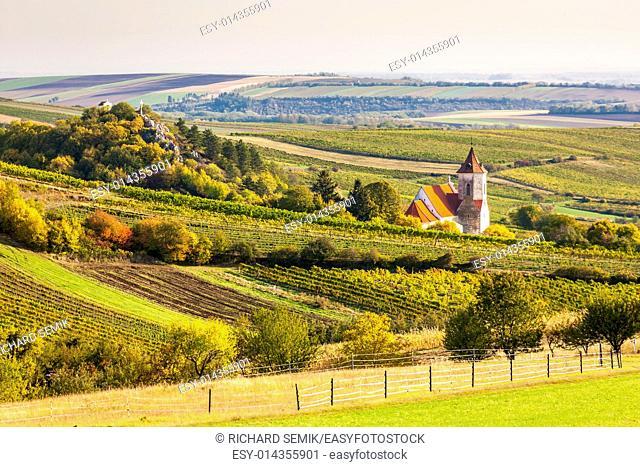 church of Falkenstein with autumnal vineyards, Lower Austria, Austria