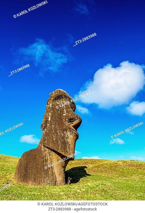 Moai at the quarry on the slope of the Rano Raraku Volcano, Rapa Nui National Park, Easter Island, Chile