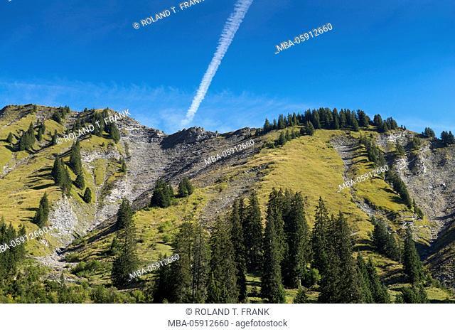 Europe, Switzerland, scenery nearby Frutigen