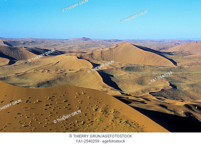 Aerial view of dunes of north Namib-Naukluft NP, Namibia, Africa