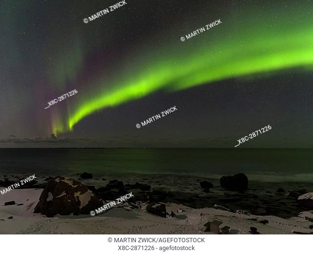 Northern Lights over Uttakleiv Beach, island Vestvagoy. The Lofoten islands in northern Norway during winter. Europe, Scandinavia, Norway, February