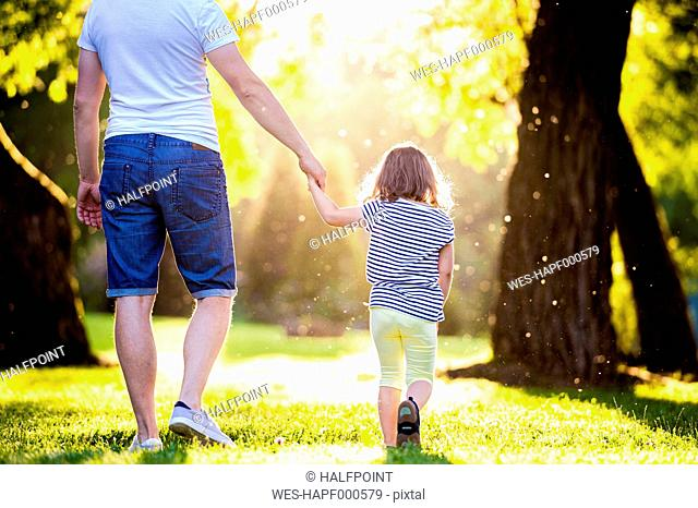 Back view of father and his little daughter walking on a meadow in the park