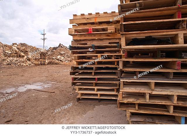 Piled up pallets at pallet recycling business in Michigan, USA