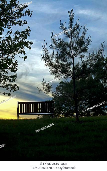 Bench Empty silhouetted by sunset