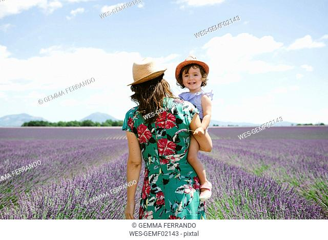 France, Provence, Valensole plateau, Mother and daughter walking among lavender fields in the summer