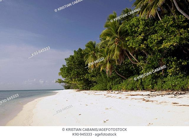 Tropical beach and island, Reef Islands, Banks, Vanuatu, Melanesia, South Pacific