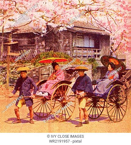 This scene in Japan dates to 1909. It shows jinrikisha men during cherry blossom time