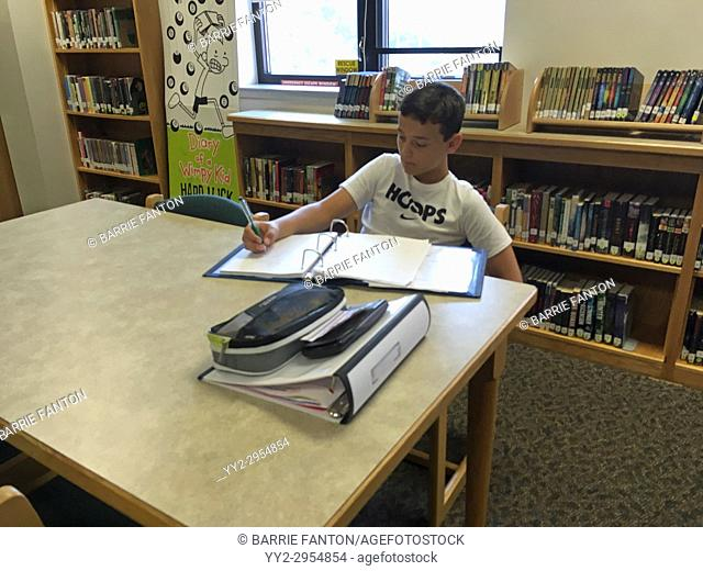 8th Grade Boy Studying in Library, Wellsville, New York, USA