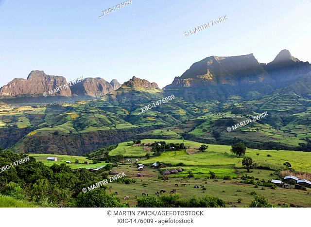 Landscape near the escarpment of the Simien Mountains close to the Simien Mts  National Park near the village of Mekarebya at an elevation of about 2300m during...