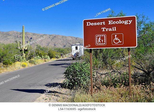Desert Ecology Trail Saguaro National Park Tucson Arizona