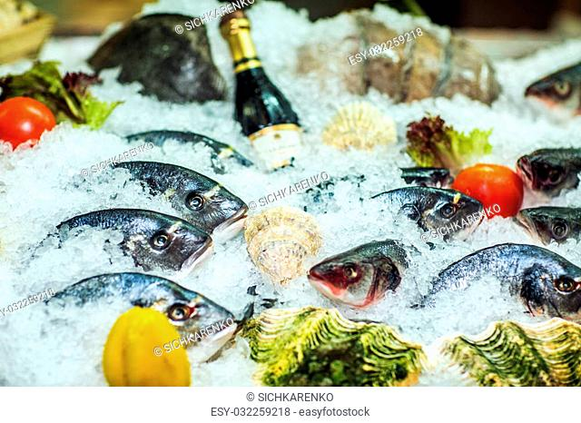 Different kinds of fish on ice with fresh vegetables. Close-up