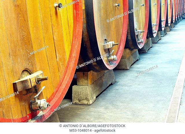large size wooden aging barrells in a large underground winery