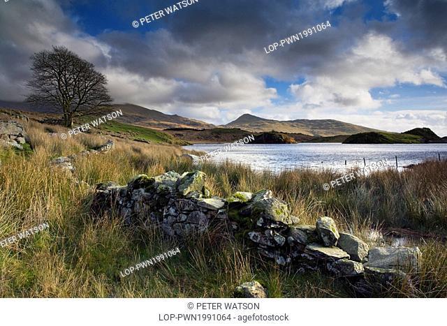 Wales, Gwynedd, Beddgelert. View across the remote lake, Llyn Dywarchen, towards the small, hidden village of Rhyd Ddu